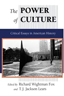 the culture of consumption critical essays in american history  the power of culture critical essays in american history