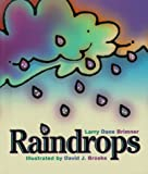 img - for Raindrops (Rookie Readers: Level B) book / textbook / text book