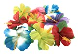 : Oojami Hibiscus Flowers for Tabletop Decoration
