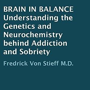 Brain in Balance Audiobook