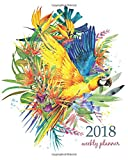 2018 Weekly Planner: Calendar Schedule Organizer Appointment Journal Notebook and Action day, parrot bird watercolor art design (2018 Weekly Planners) (Volume 31)