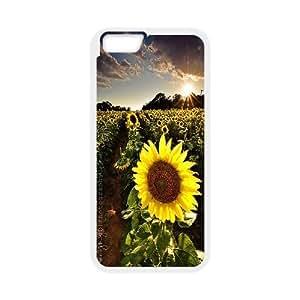Customized Beautiful Sunflower Iphone6 Plus Case, Beautiful Sunflower DIY Case for iPhone 6 plus 5.5