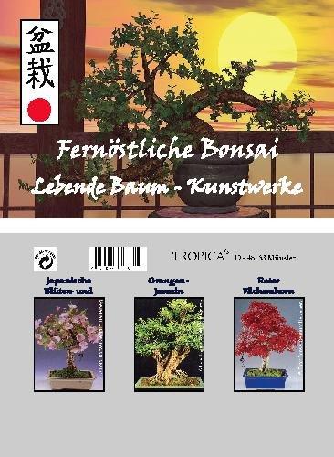 13 opinioni per Mini serra per bonsai- estremo oriente- con semi di ciliegio, murraya paniculata