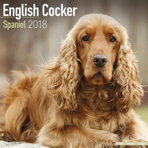 English Cocker Spaniel Calendar - Dog Breed Calendars - 2017 - 2018 wall Calendars - 16 Month by Avonside