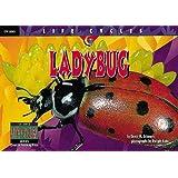 Lady Bug (Life Cycles)