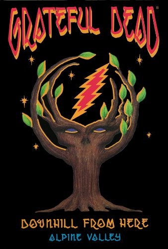 DVD : Grateful Dead - Downhill From Here (DVD)