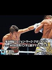 亀田興毅×ジョン・マーク・アポリナリオ(2013) WBA世界バンタム級タイトルマッチ
