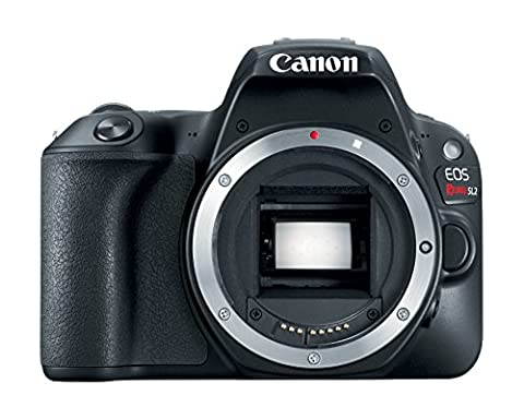 Canon EOS Rebel SL2 Digital SLR Camera Body - WiFi Enabled (Digital Rebel Body)