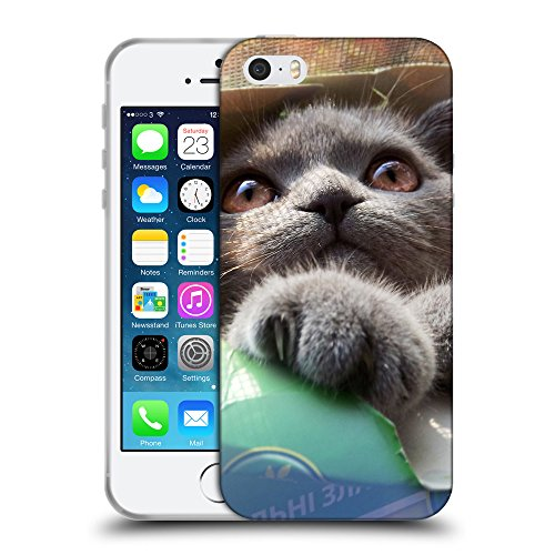 Just Phone Cases Coque de Protection TPU Silicone Case pour // V00004249 chaton coincé dans la boîte de papier // Apple iPhone 5 5S 5G SE