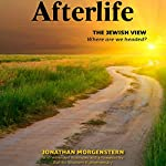 Afterlife: The Jewish View | Jonathan Morgenstern,Sholom Kamenetsky