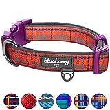 Blueberry Pet 7 Patterns Soft & Comfy Scottish Dream Classic Plaid Style Designer Padded Dog Collar, Medium, Neck 14.5''-20'', Adjustable Collars for Dogs