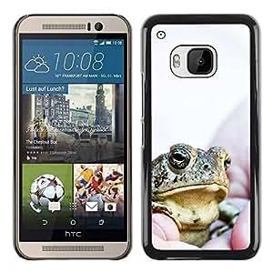 Paccase / SLIM PC / Aliminium Casa Carcasa Funda Case Cover para - Boss Frog - HTC One M9