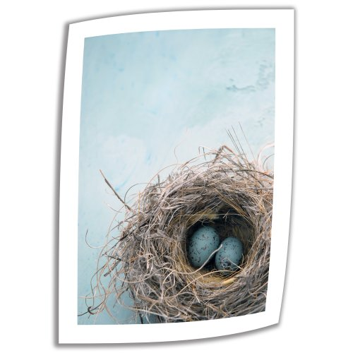 ArtWall 'Blue Nest' Unwrapped Canvas Art by Elena Ray, 16 by 22-Inch
