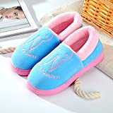 Aemember Bag Of Cotton Slippers With Couples Home Soft Thick Bottom Bottom Skid In Winter Indoor Home Furnishing Shoes,42-43 (Fit For 41-42 Feet),Sky Blue (Quan Bao)