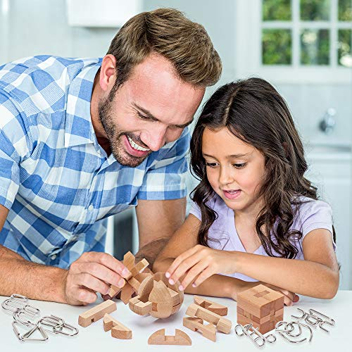 Brain Teasers Metal and Wooden Puzzles for Kids and Adults 9 Pack, Mind, IQ, and Logic Test and Handheld Disentanglement…