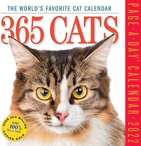 2022 Cat Calendar.