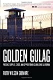 Golden Gulag: Prisons, Surplus, Crisis, and Opposition in Globalizing California (American Crossroads)