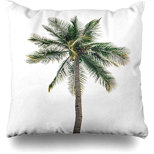 Throw Pillow Cover Square 18x18 Green Palm Coconut White Nature Botany Branch Color Exotic Foliage Design Zippered Cushion Case Home Decor Covers