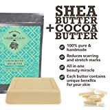 Unrefined Shea Butter Cocoa Butter – 1 LB Bar Each – Ivory Shea Butter and Raw Cocoa Butter, Hydrating Combo. Great for DIY face and body lotions, creams, lip balms, etc. Caribbean Cacao Brand Review