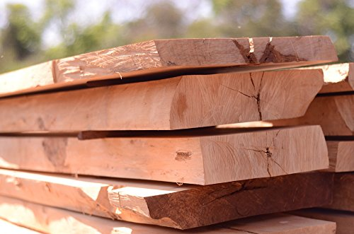 LAMINATED POSTER Hardwood Forestry Wood Tree Natural Wood Oak Poster 24x16 Adhesive ()