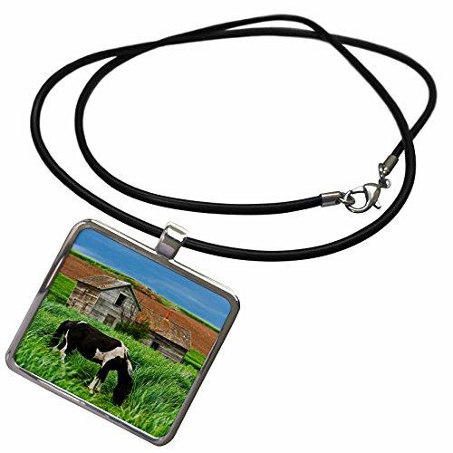 3dRose Danita Delimont - Horses - Horses, Palouse, Colfax in Washington State - US48 JRE0008 - Joe Restuccia III - Necklace With Rectangle Pendant (ncl_95829_1)