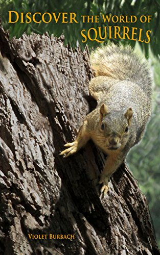 Discover the World of Squirrels: Illustrated Kids Book With Fun Facts About Squirrels And Builds Kids Vocabulary About Squirrels