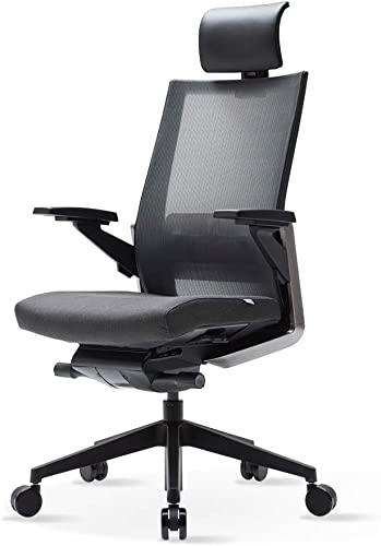 SIDIZ T80 Ergonomic Home Desk Chair T800HLDA Ultimate Sync Mechanism, Mesh Back with Lumbar Support Headrest, 3-Way Adjustable Arms, Adjustable Seat Slide Slope Dark Grey