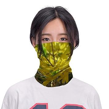 Seamless Face Mask Bandana Tube Scarf