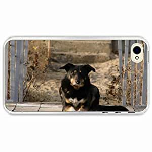 iPhone 4 4S Black Hardshell Case dog court opinion Transparent Desin Images Protector Back Cover