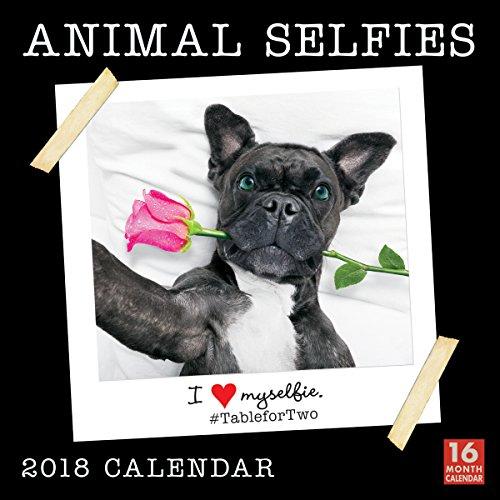 Animal Selfies - I Love Myselfie 2018 Wall Calendar (CA0105)