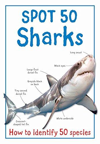 Read Online SPOT 50 - SHARKS PDF