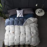 Duvet fall winter luxury simple style was core warm dust mite polyester fiber anti-allergic large size quilts (Color : Pattern 2, Size : 150200cm)