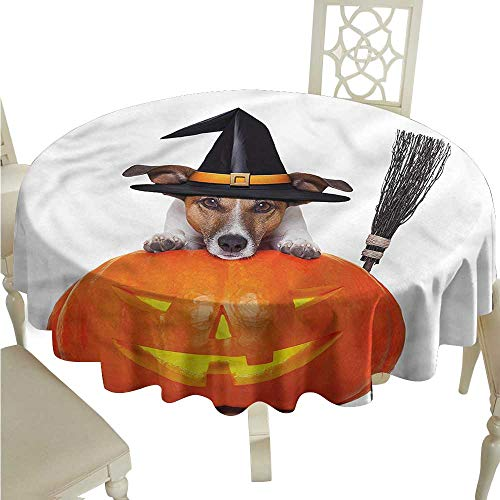 ScottDecor Picnic Cloth Halloween,Witch Dog with Broomstick Table Cover Round Tablecloth D -