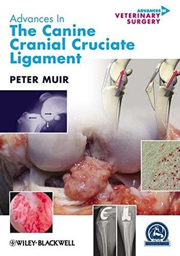 Advances In The Canine Cranial Cruciate Ligament
