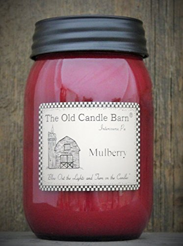 Mulberry 16 Oz Jar Candle - Made in the USA - Blow out The Light And Turn On The Candles! ()