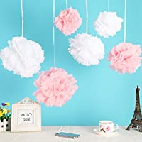 Wisehands 12pcs Mixed 3 Sizes White Pink Tissue Paper Pom Poms Flower Wedding Party Baby Girl Room Nursery Decoration