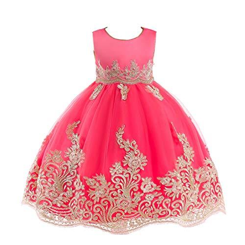 JIANLANPTT Elegant Kids Girls Appliques Embroidered Lace Floral Tulle Dress Children Wedding Party Dress 7-8Years Watermenlon Red