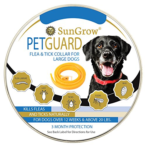 Flea and Tick Collar = 3 Months of protection + Special Water-resistant design + Made with Natural Essential Oils for Pest Control + Non-Greasy & Odorless + Suitable for Large Dogs + Easy to Use