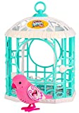 Little Live Pets Bird with Cage - Ruby Belle