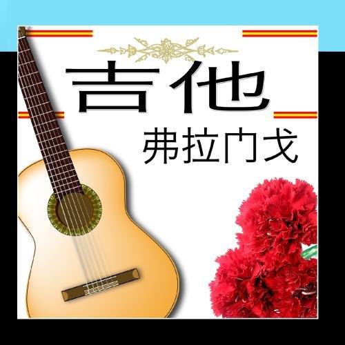 20-flamenco-guitar