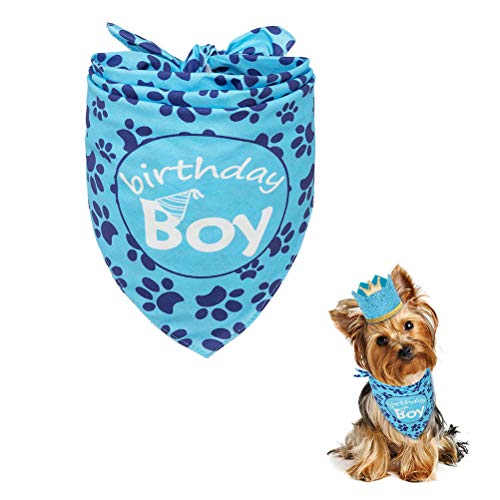 EXPAWLORER Dog Birthday Bandana with Crown Hat - Triangle Scarfs and Cute Party Hat for Pets, Blue -
