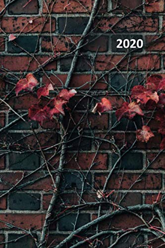 2020 Old Vine - 2020: Vines that grow on brick walls convenient Planner Calendar Organizer Daily Weekly Monthly Student gifts for the avid gardener