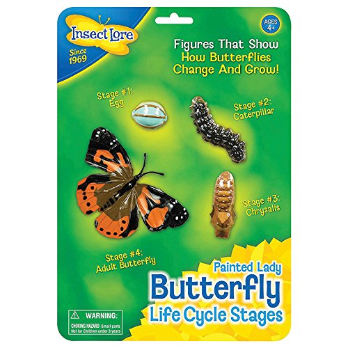 Butterfly Learning Toy - 4 Piece Set Shows Metamorphasis Of