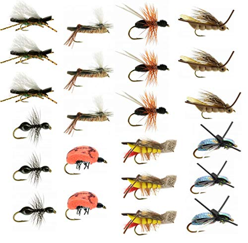 Terrestrial Trout Fly Fishing Flies Collection: 23 Flies + Fly Box (Best Beetle Fly Patterns)