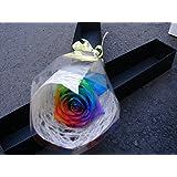 【生花】ブラックボックス レインボーローズ 生花 花束 ギフトボックス