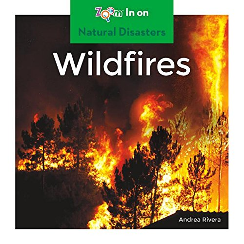 Wildfires (Natural Disasters)
