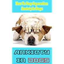 Anxiety in Dogs: How To Stop Separation Anxiety In Dogs