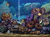 Living Marine Aquarium DVD