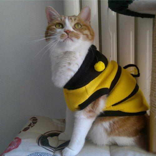 Cat Dog Clothing Cute Bumble Bee Dress Up Costume Apparel Coat Clothes Pet Supplies