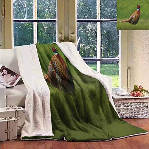 (Sunnyhome Sherpa Fleece Blanket Bird Pheasant Long Tail Meadow Throw Blanket Picnic Blanket W59x31L)